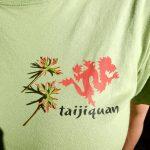 Majica - Taiji poletna delavnica, Plužna 2016